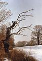 Rapocin (2.3.1993) in Poland (3).jpg