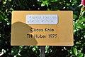 Rapperswil - Duftrosengarten - Circus Knie TH Huber 1975 2010-08-29 16-22-20.JPG