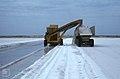 Reaper picks salt swathe up, to hopper, to truck running alongside. Inagua (38155018664).jpg