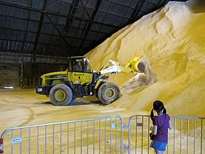 Sugar refinery - Raw sugar storage in a sugar refinery