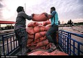 Relief to Flood-affected ranchers by the Barakat Foundation & Basij014.jpg