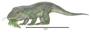 Revueltosaurus - Restoration