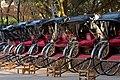 Rickshaw fleet.jpg