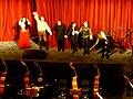 Rigoletto Wiener Staatsoper Wien Austria - panoramio.jpg