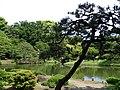 Rikugien Gardens - Tokyo - Japan - 04 (40940744353).jpg