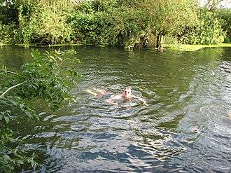 River Granta - Swimming in the River Granta near Grantchester Meadows