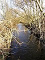River Stour near Wilden Pool - geograph.org.uk - 653767.jpg