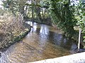 River Whitewater - gravel bed - geograph.org.uk - 668645.jpg
