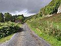 Road at Doonkelly - geograph.org.uk - 1505916.jpg