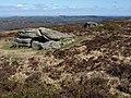 Rocks on Black Hill - geograph.org.uk - 1230837.jpg