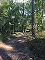 Rocky Ridge Horse Trail Enid Lake 2018 3.jpg