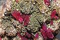 Rosélite, cobaltaustinite, dolomite 1100.FS2015.jpg