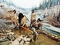 Royal Alberta Museum (8723522091).jpg