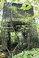 Ruine - panoramio (19).jpg