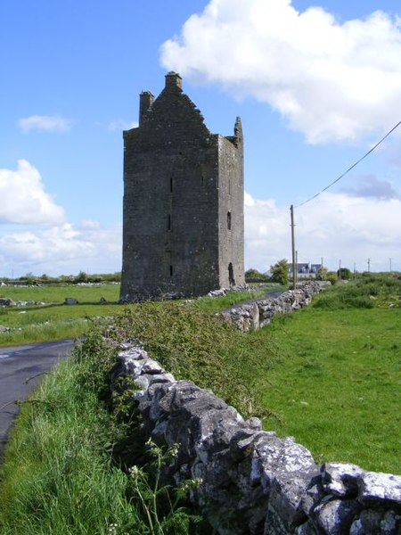 File:Ruined tower house - Drumharsna South Townland - geograph.org.uk - 1314713.jpg