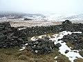 Ruins at Mains of Glenderby - geograph.org.uk - 142449.jpg