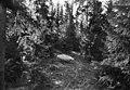 "Runic bolder ""Jarlabanke's stone"", Södra Sätra, Sollentuna, Uppland, Sweden (30296839151).jpg"