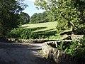 Rural bridge near Bryn-newydd - geograph.org.uk - 257298.jpg