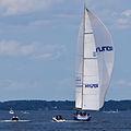 Sailboat 6558.jpg