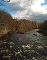 Salmon River Pulaski NY 20091101.JPG