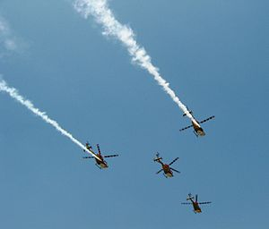 HAL Dhruv - IAF Sarang display team uses modified Dhruvs