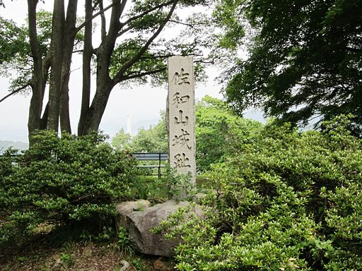 Sawayama Castle Site