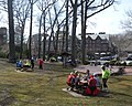 Scarsdale lunch park jeh.jpg