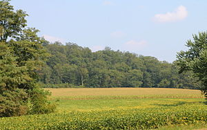 Jackson Township, Northumberland County, Pennsylvania - Scenery of Jackson Township from Herndon Bypass Road