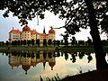Schloss Moritzburg Uferblick.jpg