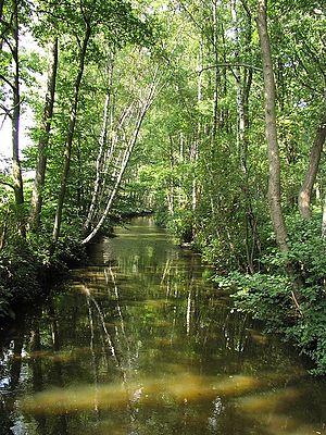 Schwalm (Meuse) - Near Hariksee, Germany
