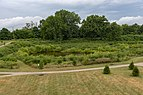 Scioto Audubon - View towards Wetland Trails 1.jpg