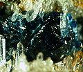Scorzalite-Quartz-280312.jpg