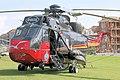 Seaking - Weston Super Mare 2007 (2409905088).jpg