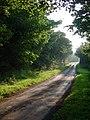 Seaside Road, Holmpton - geograph.org.uk - 983401.jpg