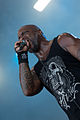 Sepultura With Full Force 2014 05.jpg