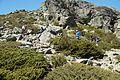 Serra Da Estrela Walk 14 (18043107090).jpg