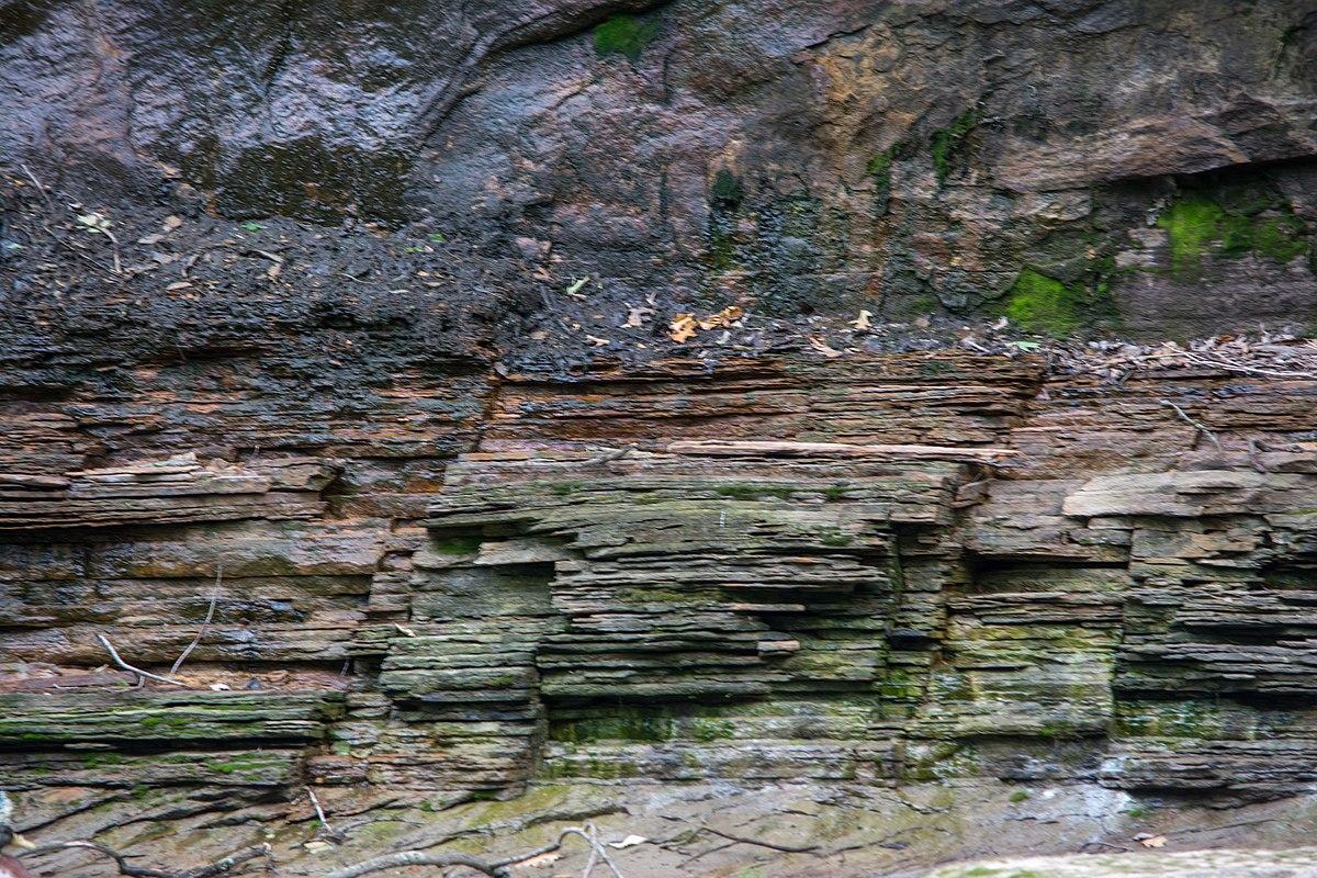 cleveland shale