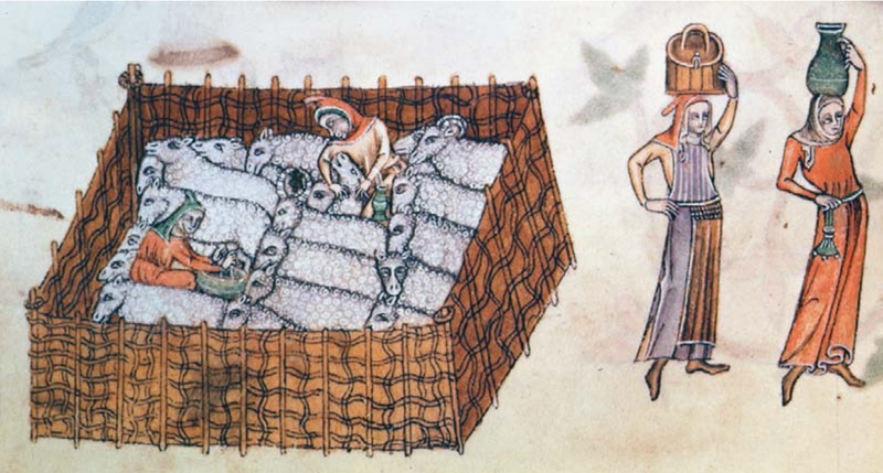 Sheep pen, from the Luttrell Psalter