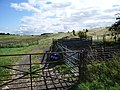 Sheep pens - geograph.org.uk - 551153.jpg