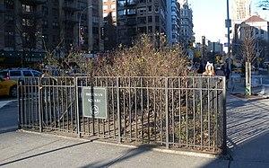 Sherman Square - Sherman Square