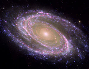 Multiwavelength M81