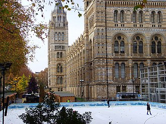 Skating at the Natural History Museum - geograph.org.uk - 613667.jpg