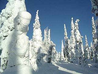 Kuusamo Town and municipality in Northern Ostrobothnia, Finland