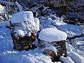 Snow-decorated logs, Strathfarrar - geograph.org.uk - 1160497.jpg