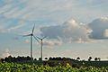 Soest-091018-10532-Windkraft-Soester-Boerde.jpg