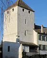 St-Prex-Lausanne-Ouchy (12.12.12) 39 (8270461538).jpg