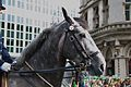 St. Patricks Festival, Dublin (6844441494).jpg