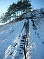 Stairs on the lower slope of the Kiviõli old ash mountain - panoramio.jpg
