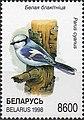 Stamp of Belarus - 1998 - Colnect 85763 - Azure Tit Parus cyanus.jpeg