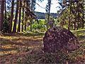 Starý náhrobný kameň ^ Old tombstone - panoramio.jpg